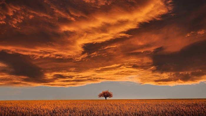 雲は天気のバロメーター、形状を覚えて予測に役立てよう