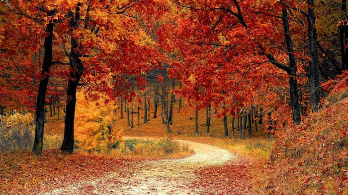 天候と季節の変化 - 秋の天気は、秋晴れ、台風、長雨と変化がいちじるしい