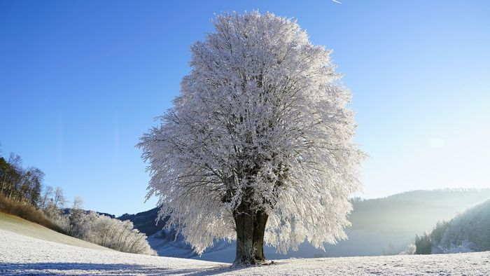 天候と季節の変化 - 寒冷な北西季節風と大雪の季節